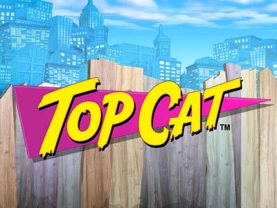 6022Top Cat