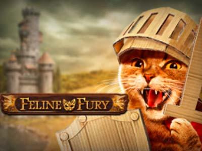 9367Feline Fury