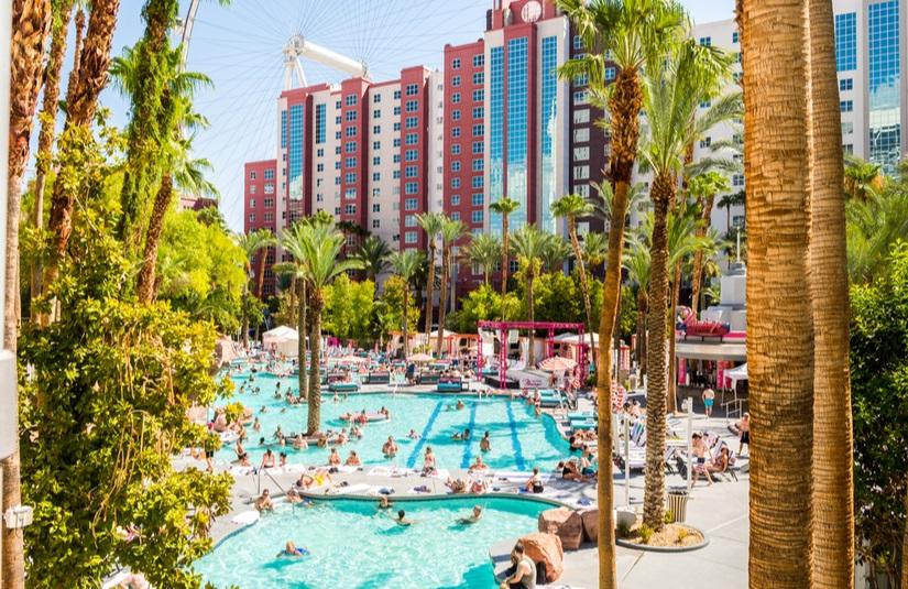 Flamingo Hotel Pool Las Vegas